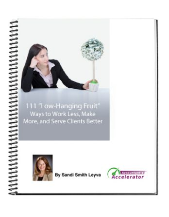 "111 ""Low-Hanging Fruit"" Ways to Work Less, Make More, and Serve Clients Better"