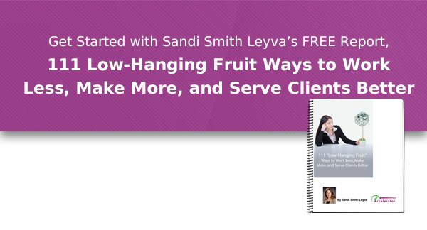 Get started with Sandi Smith Leyva's FREE report, 111 Low-Hanging Fruit, Ways to Work Less, Make More, and Serve Clients Better