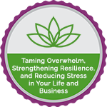 Taming Overwhelm, Strengthening Resilience, and Reducing Stress in Your Life and Business